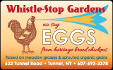 Whistle Stop Farm Eggs