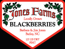 Jones Farm Blackberries