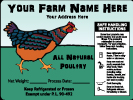 Poultry-13
